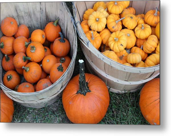 At The Farmer's Market 4 Metal Print by Mary Bedy