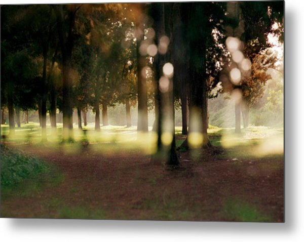 At The Yarkon Park Tel Aviv Metal Print