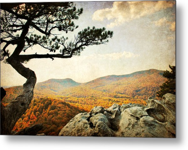 Atop The Rock Metal Print