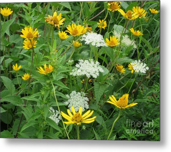 August Wildflowers Metal Print