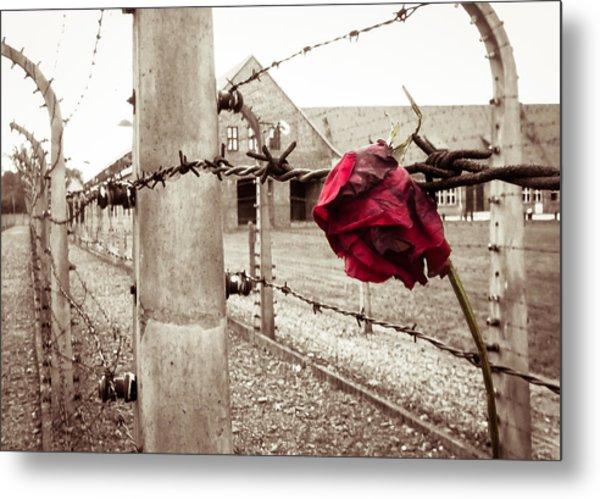 Auschwitz Metal Print
