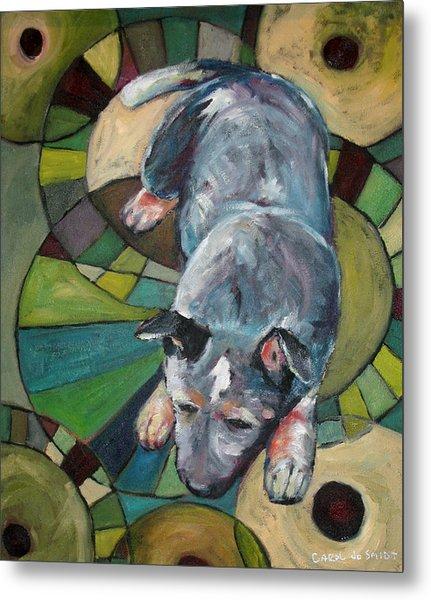 Australian Cattle Dog Nap Time Metal Print