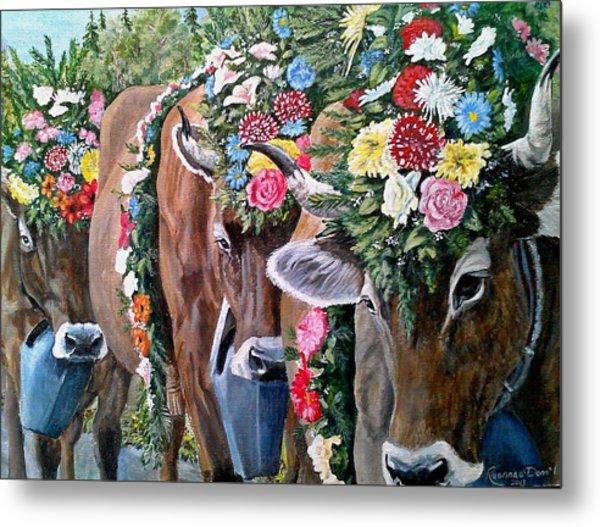Austrian Cattle Drive Metal Print