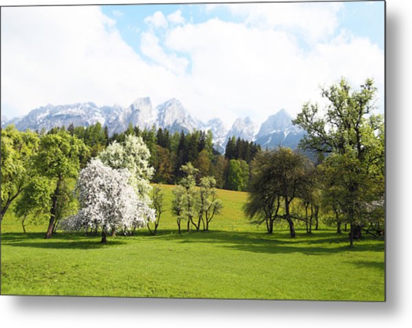 Austrian Landscape In Spring Metal Print by Brooke T Ryan