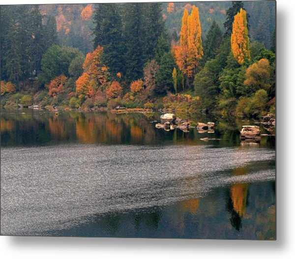 Autumn Along The Umpqua Metal Print