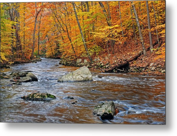 Autumn At The Black River Metal Print