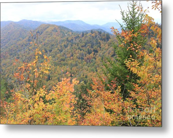 Autumn Bliss Metal Print