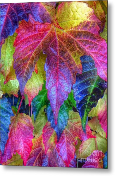 Autumn Bold Metal Print