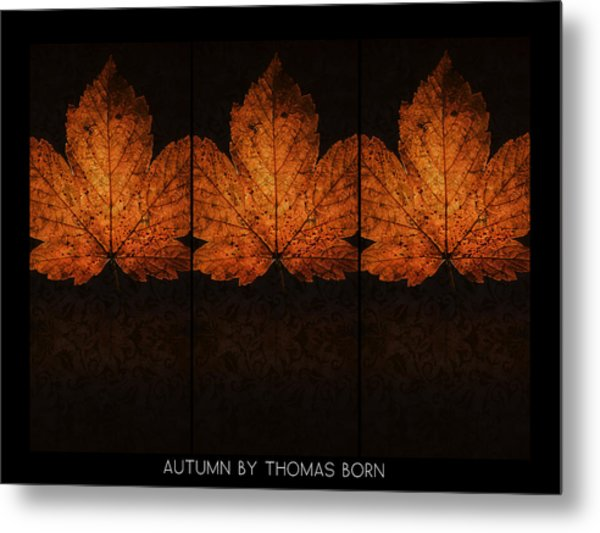 Autumn By Thomas Born Metal Print