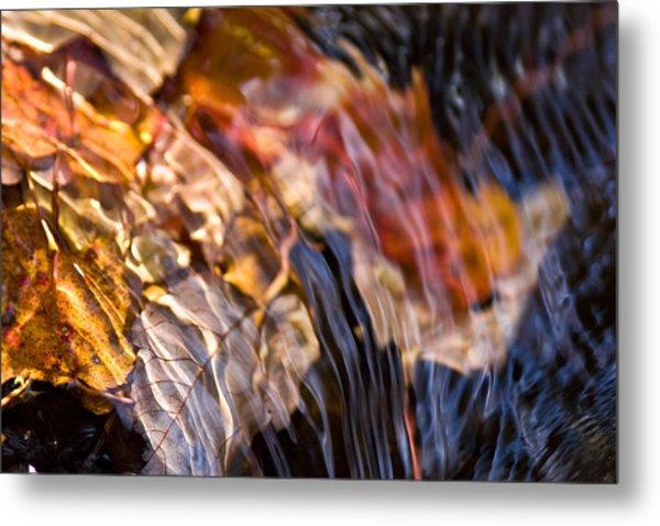 Autumn Color Beneath The Surface Metal Print
