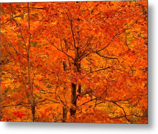 Autumn Color Splash Metal Print