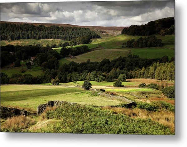 Autumn Colours In The North Yorkshire Metal Print by Dan Kitwood