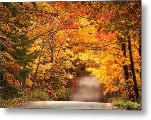 Autumn Country Road Metal Print