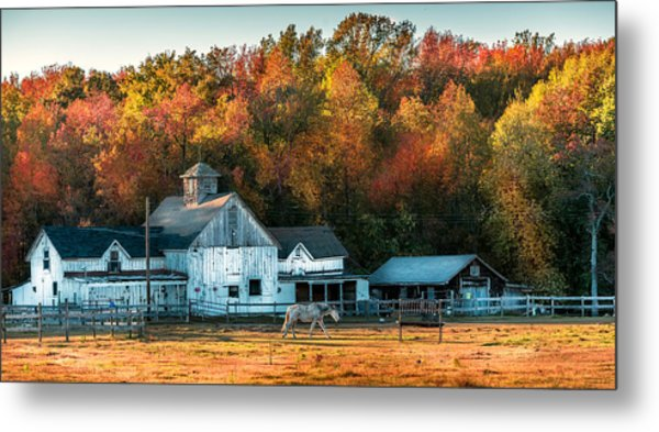 Autumn Days Metal Print