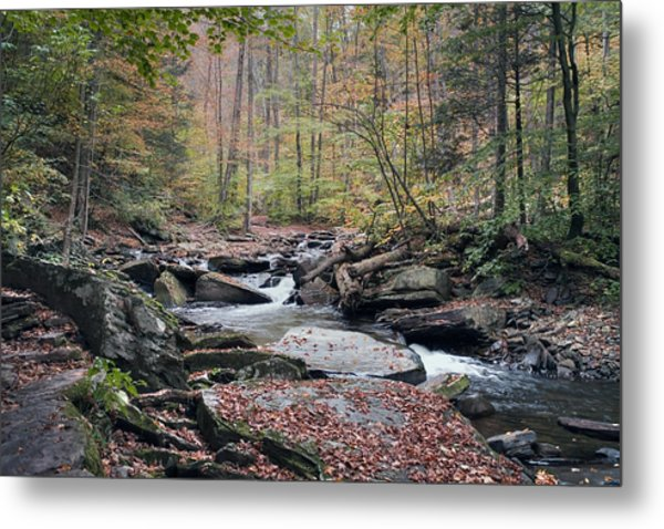 Autumn Drizzle On Kitchen Creek Metal Print