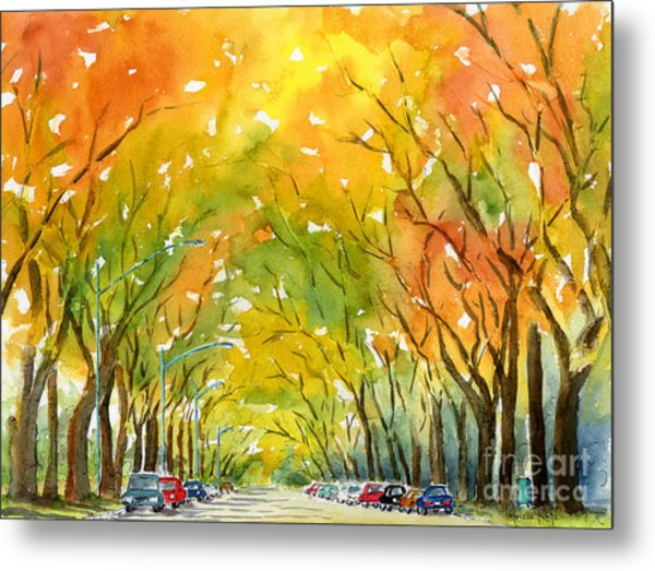 Autumn Elms Metal Print by Pat Katz