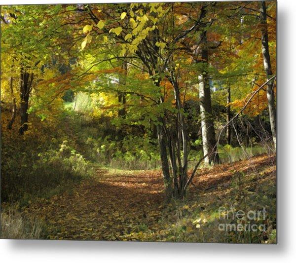 Autumn Feeling Metal Print by Lutz Baar