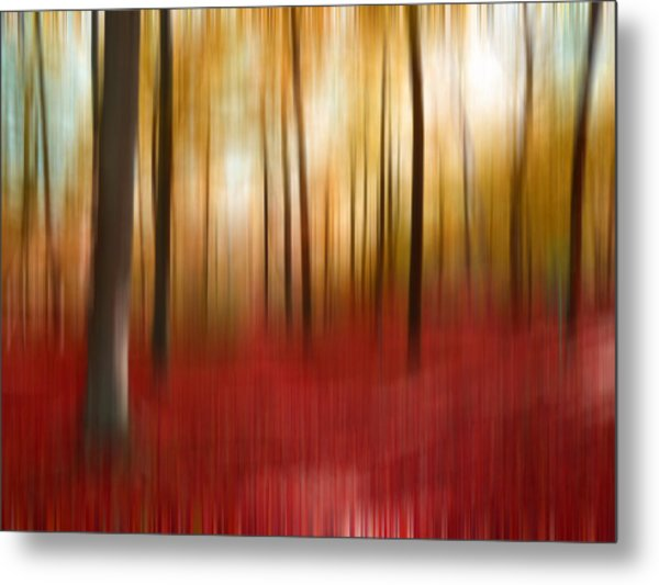 Autumn Forest Metal Print by Angela Bruno
