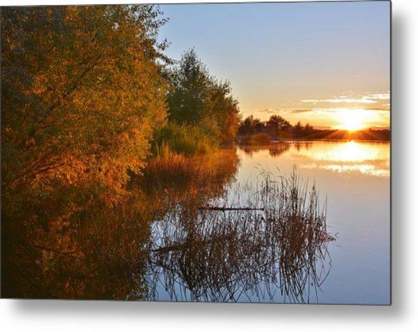 Autumn Glow At The Lake Metal Print