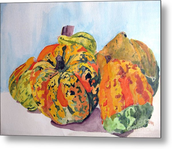 Autumn Gourds Metal Print