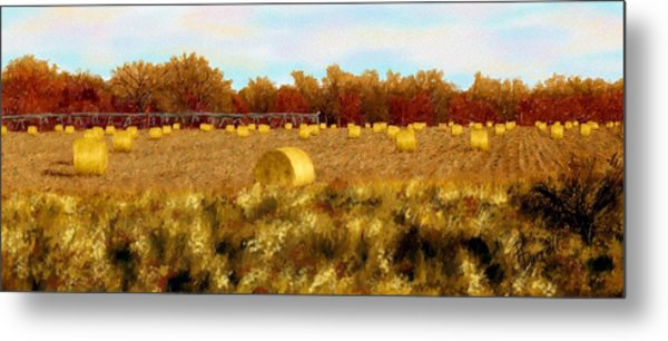 Autumn Hay Metal Print