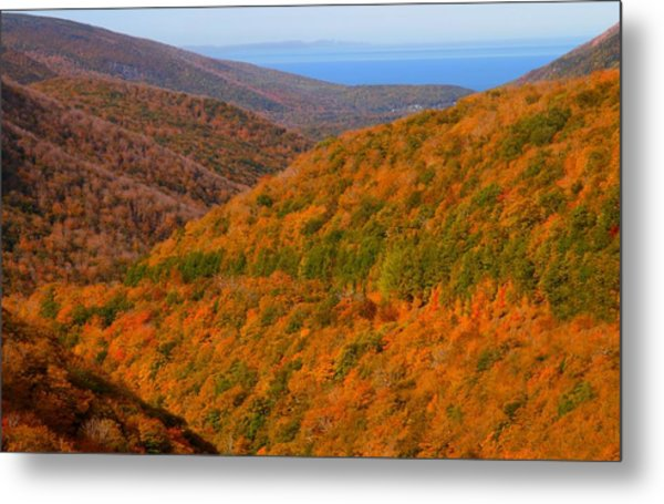 Autumn Hillsides At Cape Breton National Park Metal Print