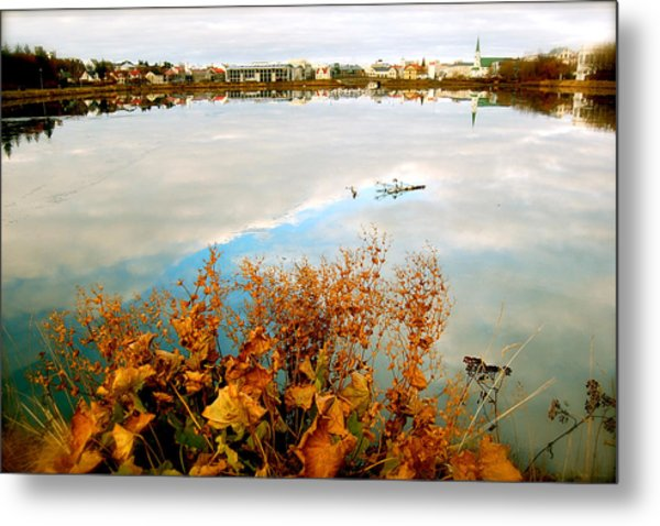 Autumn Ice Metal Print