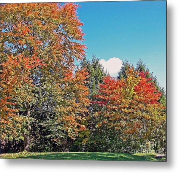 Ohio Autumn In Full Color Metal Print
