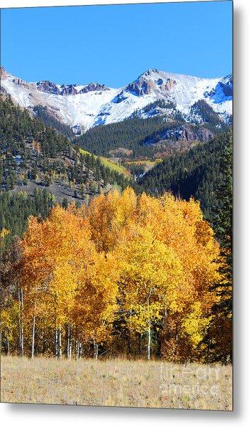 Autumn In Lake City Metal Print