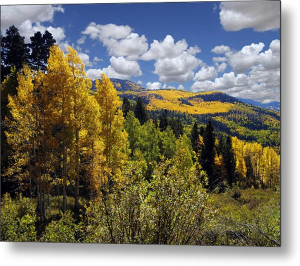 Autumn In New Mexico Metal Print