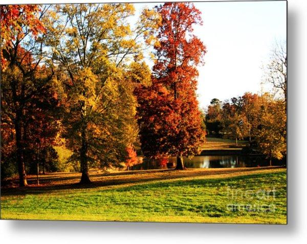 Autumn In The Air... Metal Print by Jinx Farmer