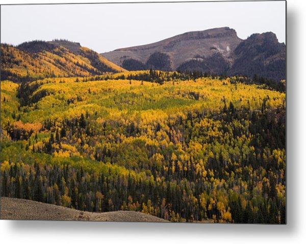 Autumn In The Colorado Mountains Metal Print by Greg Ochocki