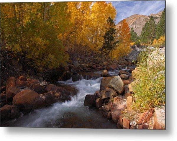 Autumn In The Eastern Sierra Metal Print
