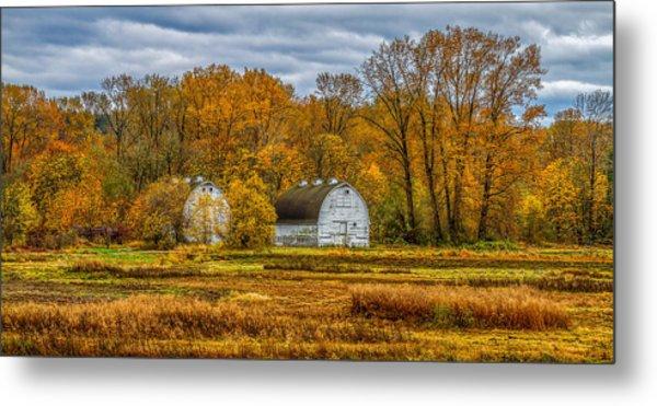 Autumn In The Meadows Metal Print