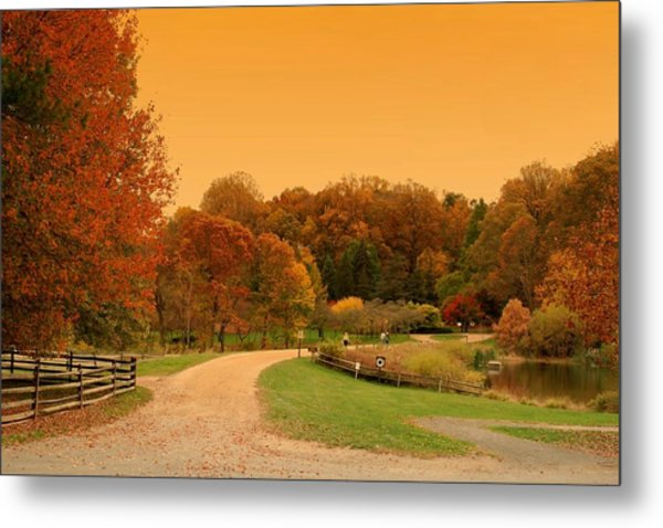 Autumn In The Park - Holmdel Park Metal Print