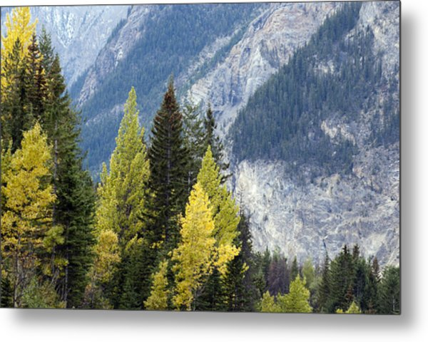 Autumn In The Rockies Metal Print
