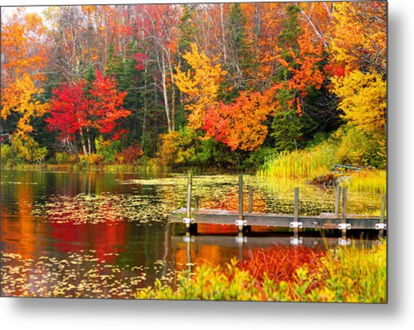 Autumn In Vt Metal Print