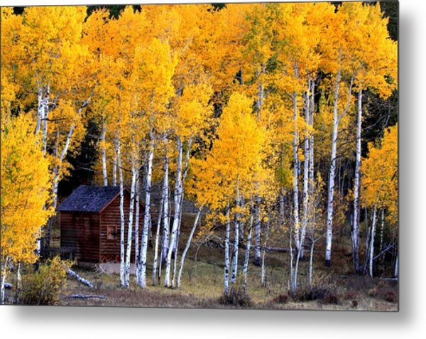 Autumn Inn Metal Print