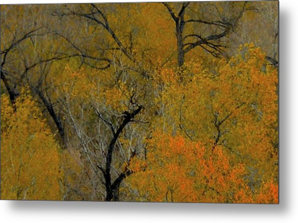 Autumn Intrigue Metal Print