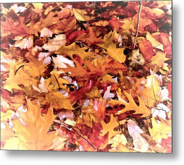 Autumn Leaves On The Ground In New Hampshire In Muted Colors Metal Print