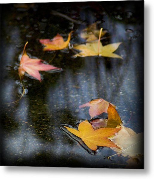 Autumn Leaves On Water Metal Print