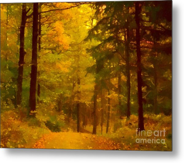 Autumn Lights Metal Print by Lutz Baar