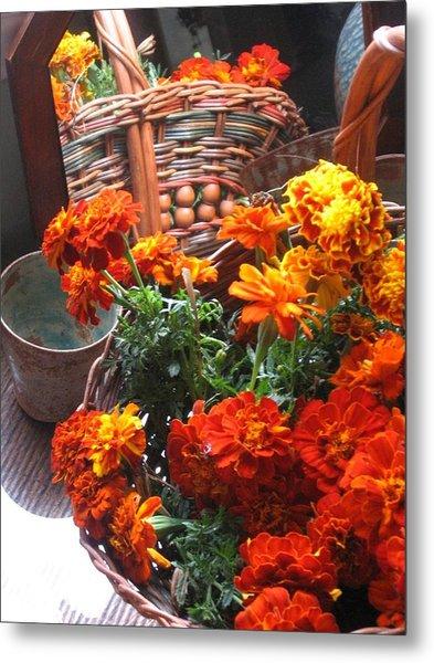 Autumn Marigolds Metal Print