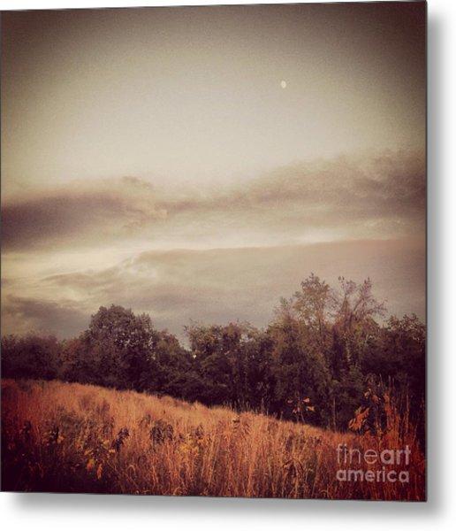 Autumn Meadow Metal Print