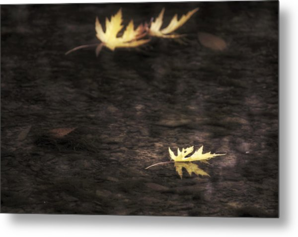 Autumn Mood - Fall - Leaves Metal Print