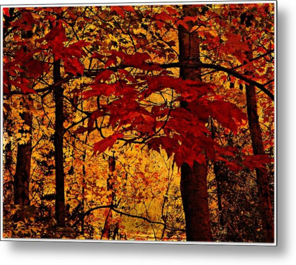 Autumn Mosiac  Metal Print by Dianne  Lacourciere