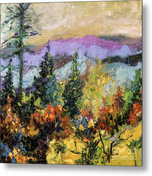 Autumn Mountain View North Georgia Metal Print