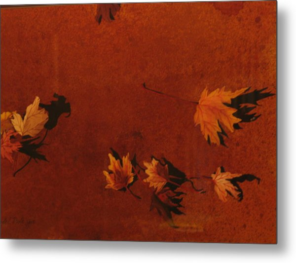 Autumn Offering Metal Print by Carole Poole