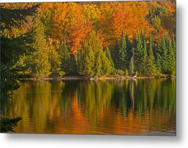 Autumn On Grand Sable Lake Metal Print