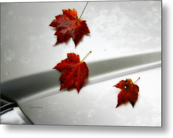 Autumn On The Car Metal Print